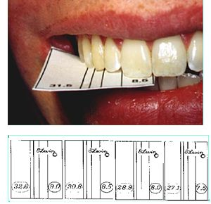 Dr. Levin dental kit grid