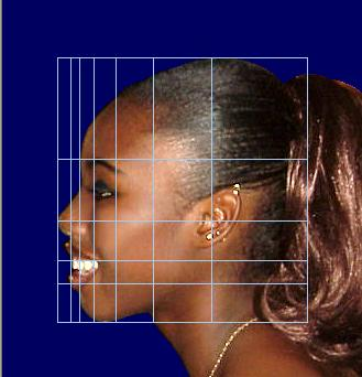 Facial proportions golden section